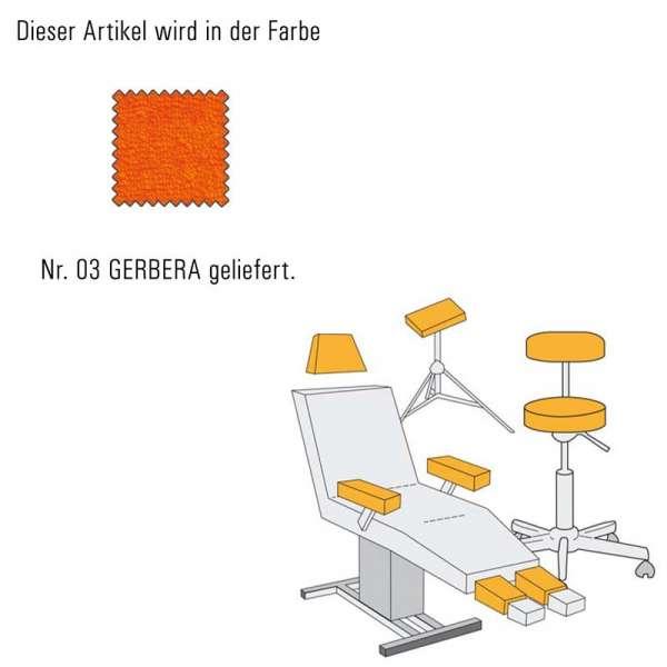 Hockerbezug_medium-gerbera